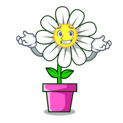 Grinning daisy flower character cartoon