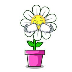 Crying daisy flower mascot cartoon