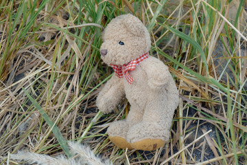 The teddy bear was left on hay background, Warm tones