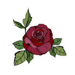 Red vector rose. Flower with leaves.