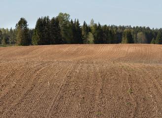 Natural plowed field.