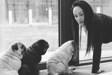Nice woman with cute pug dog at home. Pet adoption, life of pets. Female carrying a pug, animals healthy happy canine adorable breed