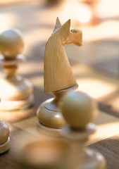 Game of Chess with Focus on the Horse.