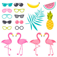 Set of Flamingo birds, sunglasses and fruits for design