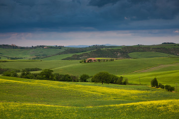 Poster Hill beautiful green summer landscape in Tuscany, Italy