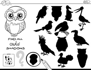 shadow game with owls color book