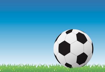 Soccer ball on green grass background, vector illustration