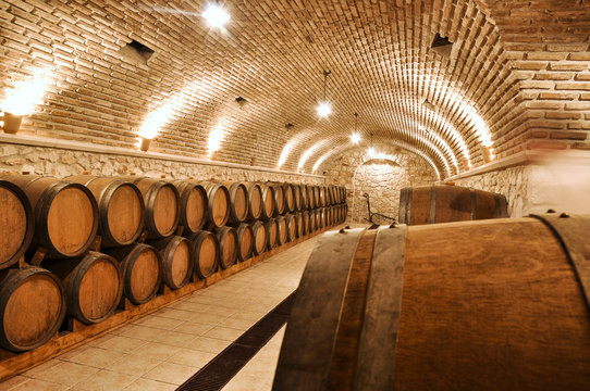 Wine barrels in the old basement of a winery storage. Cellar of restaurant wine vault with brick stone walls.