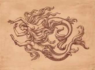 Две плывущие русалки, рисунок тушью на коричневой бумаге.