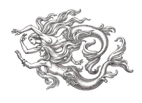 Две плывущие русалки, рисунок, графика чёрно-белая.