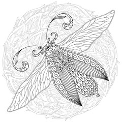 Detailed ornamental sketch of a moth