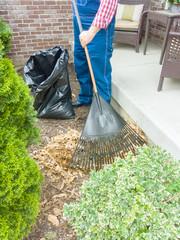 Gardener raking dead leaves in a yard