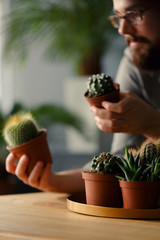 Close-up of succulents and cacti on gold plate. Blurred hipster in the background