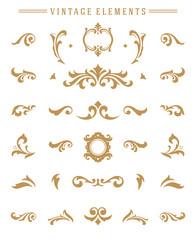 Vintage ornaments set floral elements for design invitations