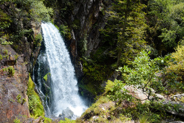 Cascada en un bosque del pirineo catalán