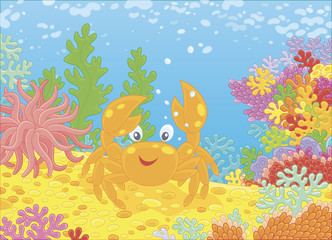 Funny red crab among colorful corals on a reef in a tropical sea, vector illustration in a cartoon style