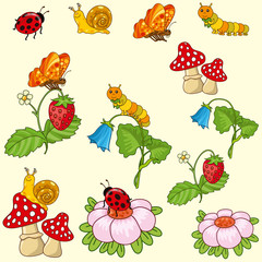 collection of plants and insects