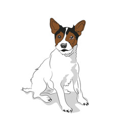 dog sitting, lines, vector, white background