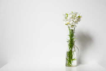 bellflower in a vase on a table by the wall, white background