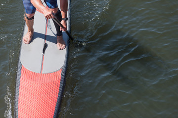 Aerial View of a Man on a Stand up Paddle Board