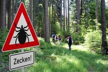 Schild mit Zeckenwarnung in gefährdetem Gebiet im Wald
