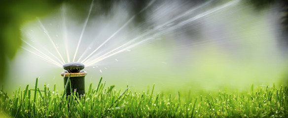 automatic sprinkler system watering the lawn on a background of