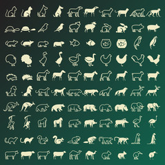 Set of 100 Thin Line and Solid Animals Icons . Vector Isolated Elements