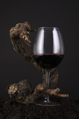 Glass of Red Wine with Vine in a Black Background