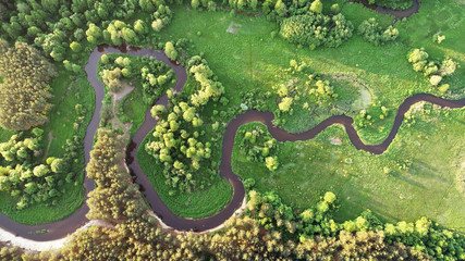 Aerial view of natural river