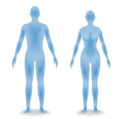 男女の人体シルエット