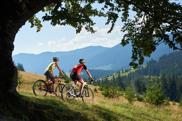 Beautiful picture of young tourist couple, man and woman in professional sportswear cycling bikes down grassy hill on magnificent blue mountain range background in oval frame of big green tree branch.