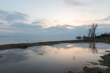 A lake shore at dawn, with beautiful tree and sky reflections on