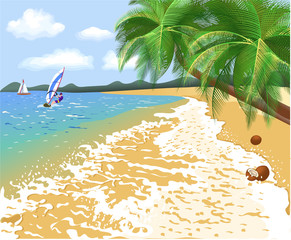 tropical beach in a summer vacation