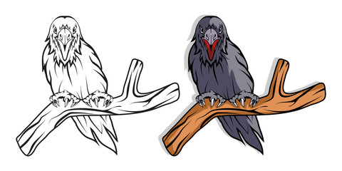 Raven. Hand drawn raven. Sketch of raven head. Vector artwork.