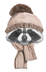 Portrait of Raccoon with hat and scarf,  hand-drawn illustration
