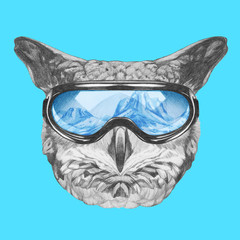 Portrait of Owl with goggles,  hand-drawn illustration