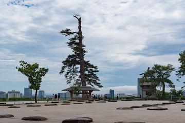 仙台城跡の広場