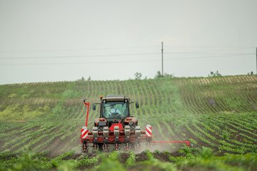 Fotomurales - Farmer seeding, sowing crops at field. Sowing is the process of planting seeds in the ground as part of the early spring time agricultural activities.