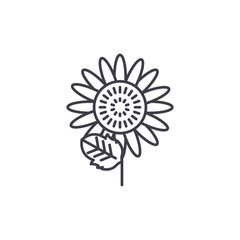 Sunflower line icon, vector illustration. Sunflower flat concept sign.