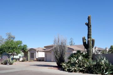 Front Yard in Phoenix, AZ
