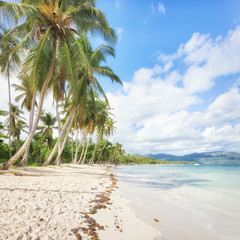 Fototapete - Panorama of secluded beach of, Las Galeras, Dominican Republic