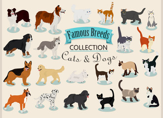 Vector set of different breeds of dogs and cats on a light background