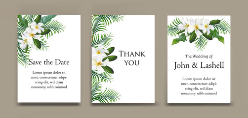 Cards with plumeria and palm leaves on card