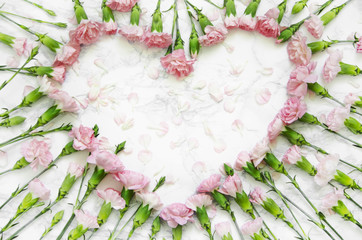 pink carnations flowers on a marble background. Top view, flatlay