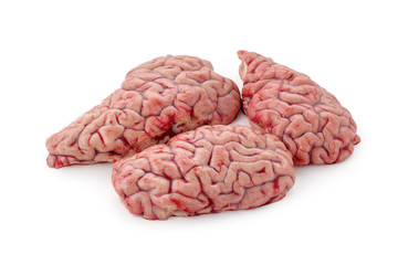 raw brain on a white background isolated