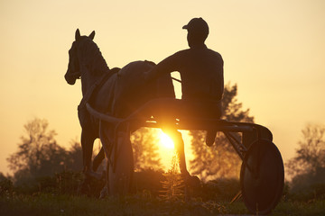 Silhouette statue of man sitting on horse cart against sky during sunrise