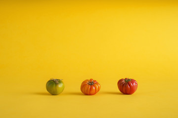 Colorful tomatoes on yellow background