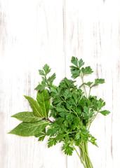 Parsley and bay laurel leaves. Fresh organic herbs. Healthy food