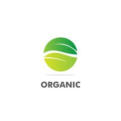 round green leaf nature logo