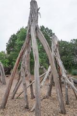 The Stumpery Display at Lady Bird Johnson Wildflower Center in Austin, Texas